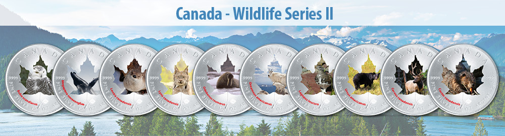 Canada Wildlife Series Iii Little Wild Ones Maple Leaf
